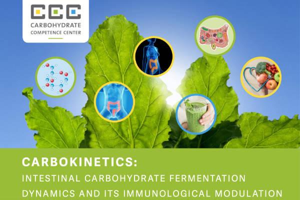 CCC Carbokinetics report 2021